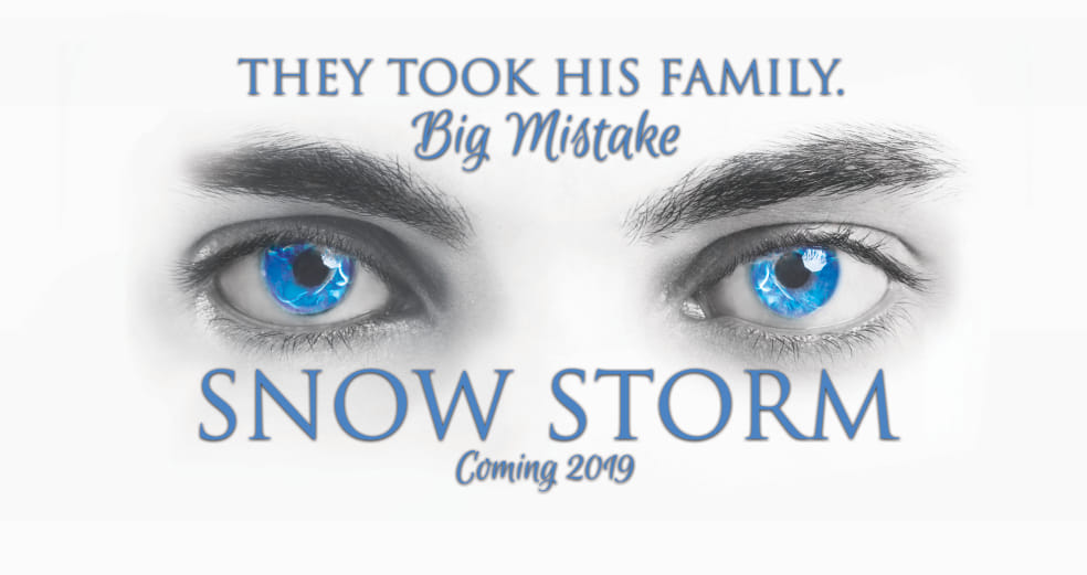 Guest Post and Giveaway: Snow Storm by Davidson King