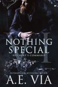 Review: Nothing Special VI by A.E. Via