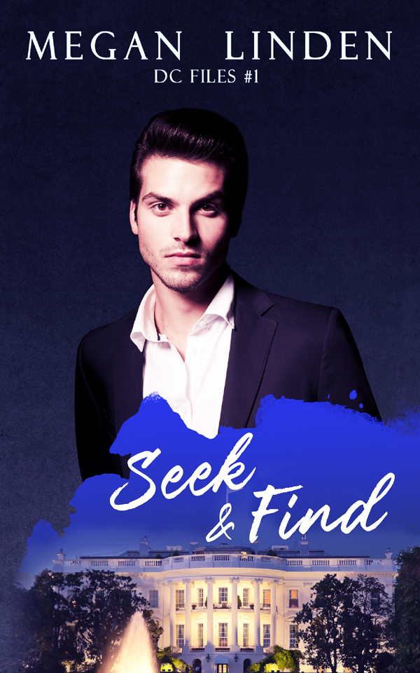Excerpt and Giveaway: Seek & Find by Megan Linden
