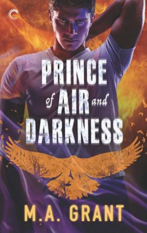 Review: The Prince of Air and Darkness by M.A. Grant