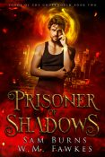Review: Prisoner of Shadows by Sam Burns and W.M. Fawkes