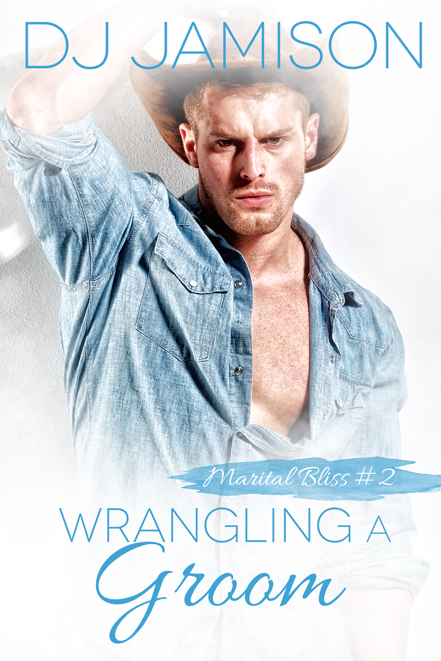 Guest Post and Giveaway: Wrangling a Groom by DJ Jamison