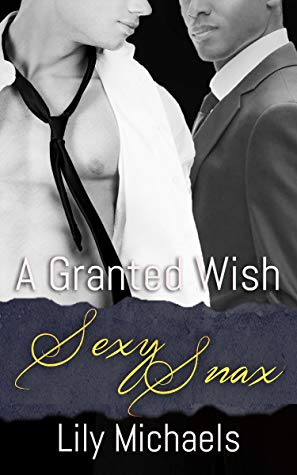 Review: A Granted Wish by Lily Michaels
