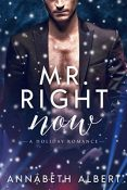 Review: Mr. Right Now by Annabeth Albert