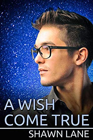 Review: A Wish Come True by Shawn Lane