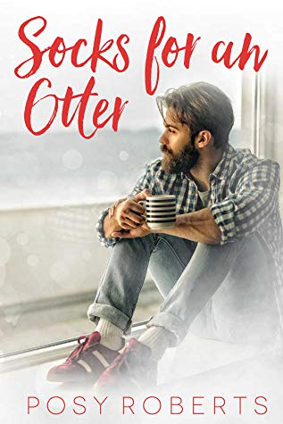 Review: Socks for an Otter by Posy Roberts