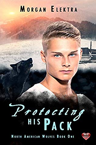 Review: Protecting His Pack by Morgan Elektra