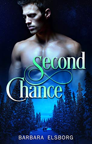 Review: Second Chances by Barbara Elsborg