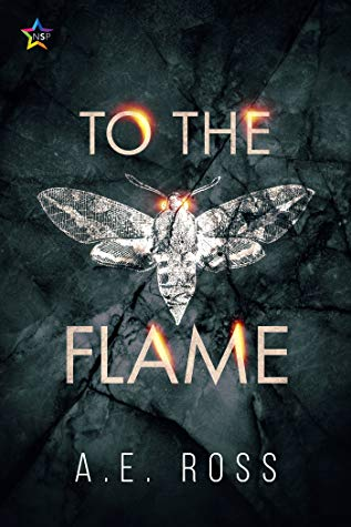 Review: To the Flame by A.E. Ross