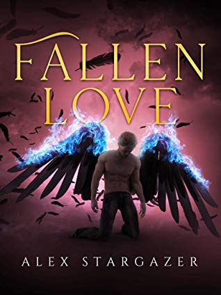 Review: Fallen Love by Alex Stargazer